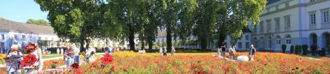 Landschaftsarchitektur, Galabau - Banner